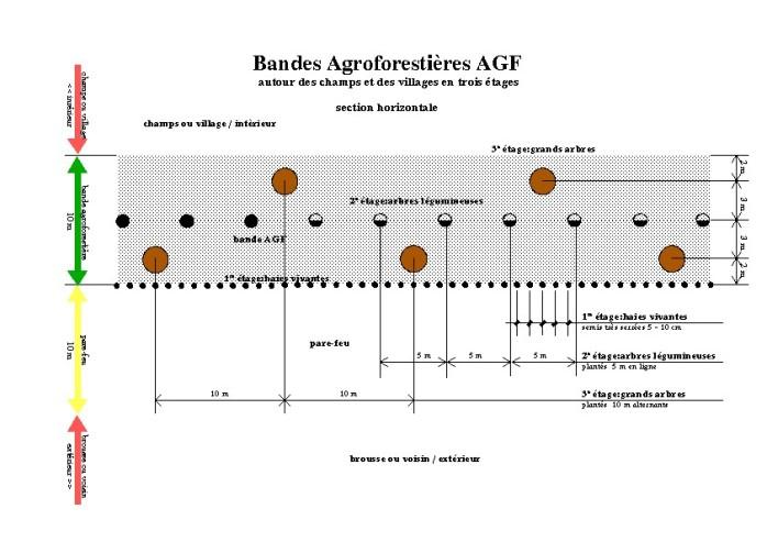 Agfband3 (2)