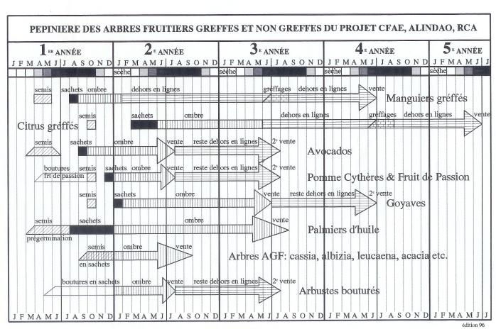 Système Pépinière